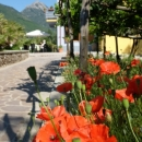 Villa Elisa Agerola (NA)